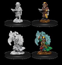 WizKids Pathfinder Unpainted W9 Male Gnome Sorcerer