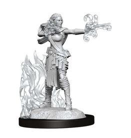 WizKids DnD Unpainted W13 Multiclass Warlock + Sorcerer Female