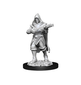 WizKids Pathfinder Unpainted W13 Human Rogue Male