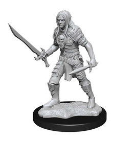 WizKids Pathfinder Unpainted W13 Elf Fighter Male