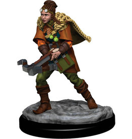 D&D Icons of the Realms Premium Fig W5 Human Ranger Female