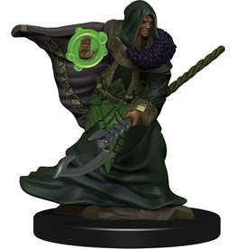 D&D Icons of the Realms Premium Fig W5 Elf Druid Male