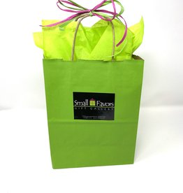 Gift Wrap Green Shopping Bag with Tissue
