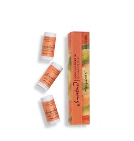 Mangiacotti Lip Repair Clementine