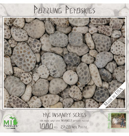 MI Puzzles (Phil Stagg Photography) 1000 Pc Puzzle Puzzling Petoskies