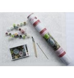 Pink Picasso Kits Paint by Numbers Kit Sensitive Succulents