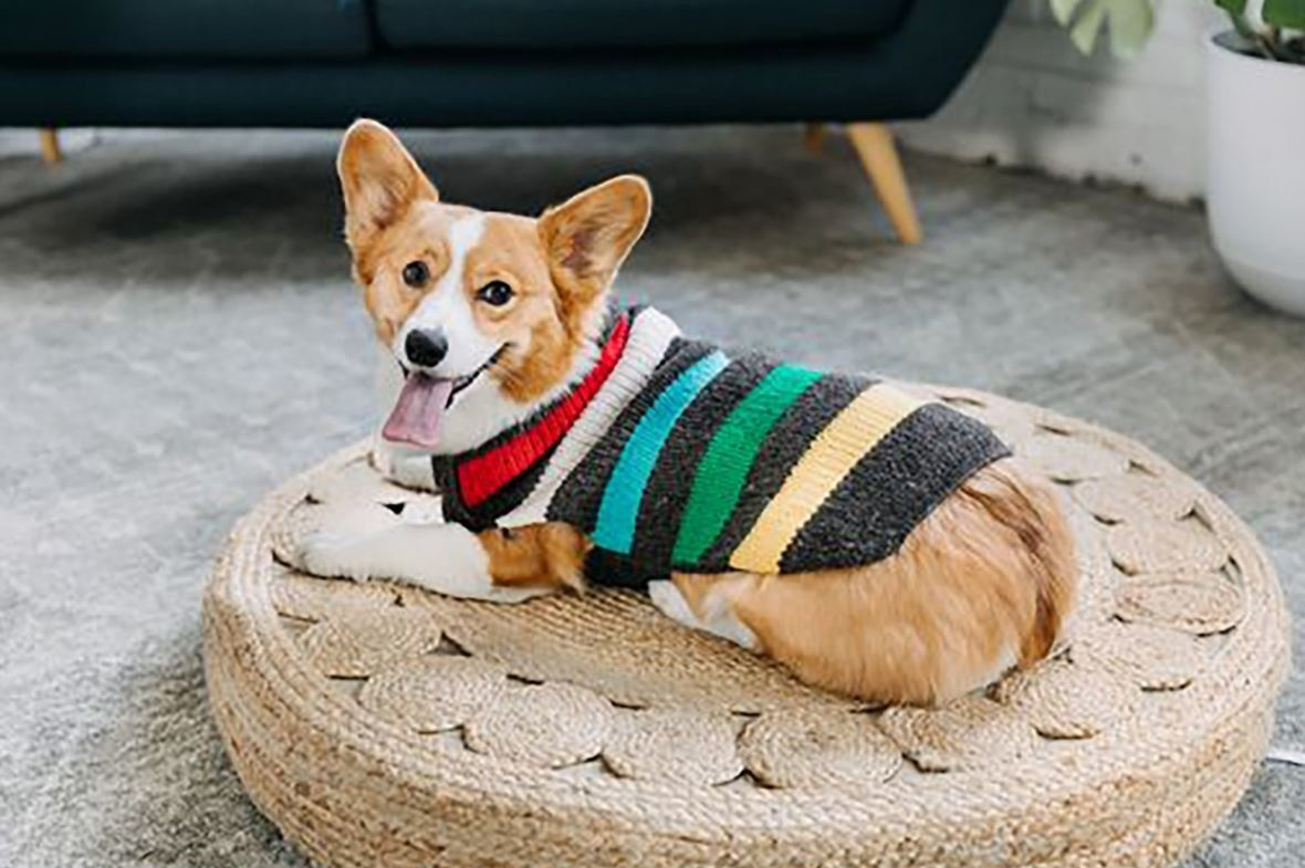 Chilly Dog Clothing Chilly Dog - Charcoal Stripe Wool Sweater