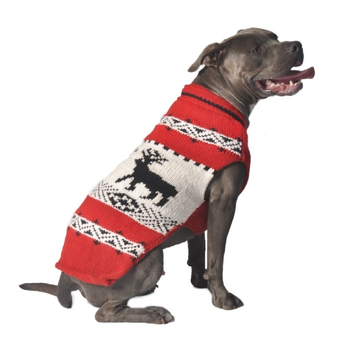 Chilly Dog Reindeer Red Wool Sweater