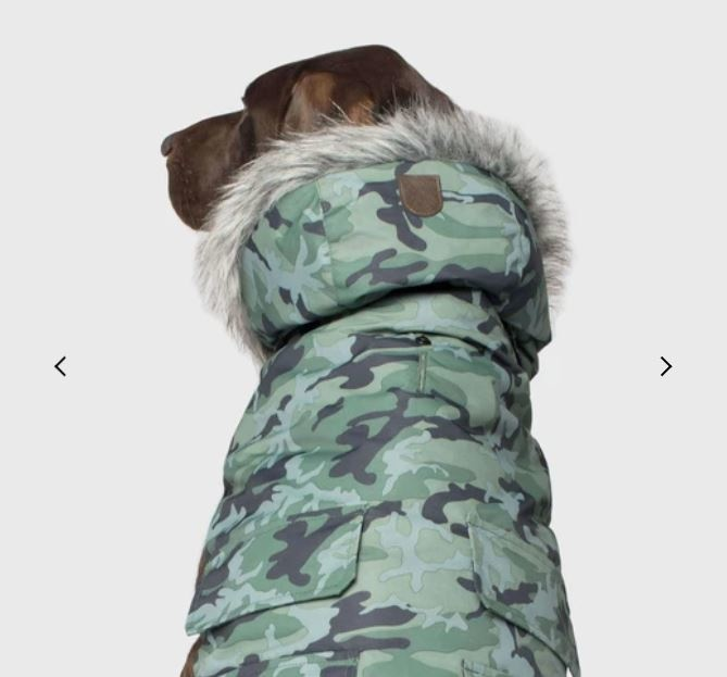 Can Pooch / Everest Explorer Jacket / Green / 16