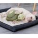 Pawz N Dogz Pawz N Dogz Turtle Snuffle and Snuggle Mat