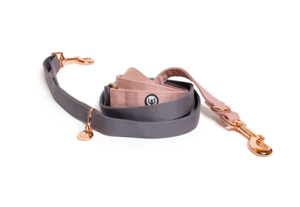 Eat Play Wag Eat Play Wag - Gray-Rose Convertible Leash 1""