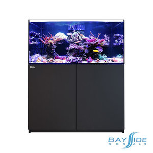 Red Sea Reefer 250 | Black