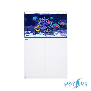 Red Sea Reefer 250 | White