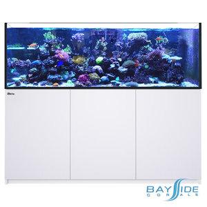 Red Sea Reefer 750 XXLᵛ³   White