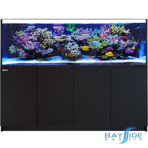 Red Sea Reefer 900 3XLᵛ³ | Black