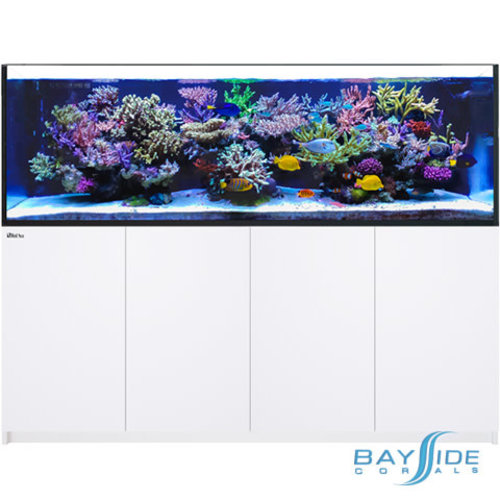 Red Sea Reefer 900 3XLᵛ³ | White