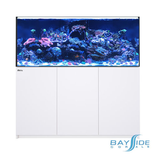 Red Sea Reefer 625 XXL | White