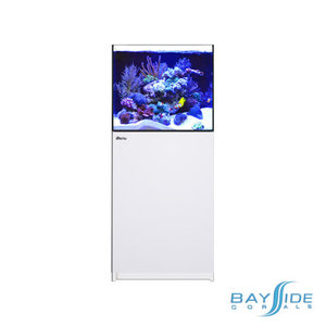 Red Sea Reefer 200 XL | White