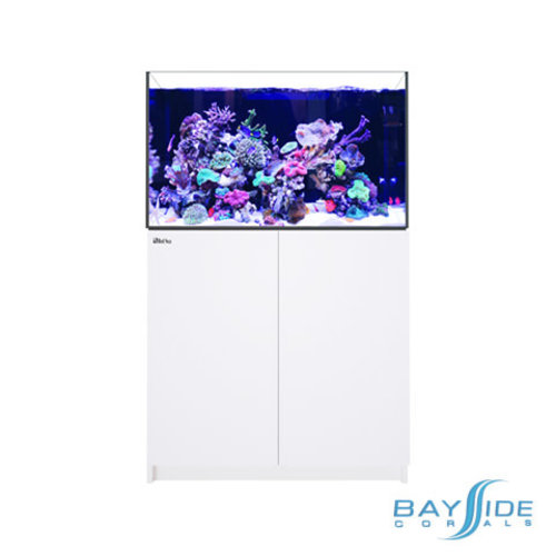 Red Sea Reefer 300 XL | White
