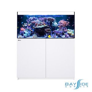 Red Sea Reefer 425 XL | White