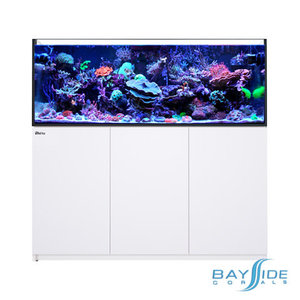 Red Sea Reefer 525 XL | White