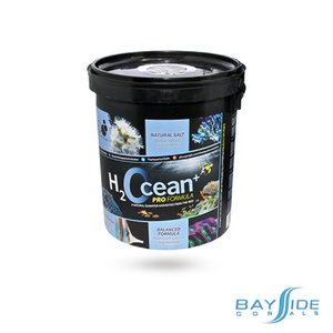 D-D Aquarium Solution H2Ocean Salt | Mini Pail 6.6kg