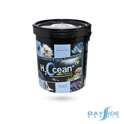 D-D Aquarium Solution D-D H2Ocean Salt | Mini Pail 6.6kg
