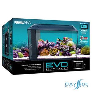 Fluval EVO LED Aquarium | 13.5 Gal