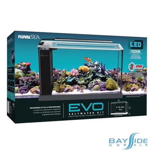 Fluval Fluval Sea EVO LED Aquarium | 5 Gal