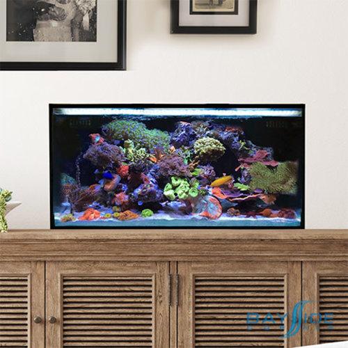 Innovative Marine IM Nuvo Fusion Pro 25 Lagoon Bundle | Desktop
