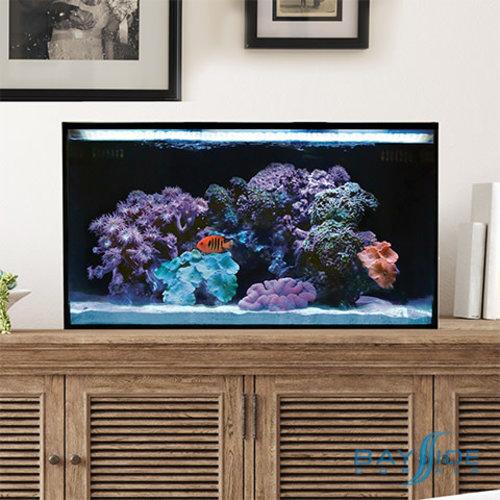 Innovative Marine IM Nuvo Fusion Pro 20 Bundle | Desktop