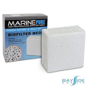 "MarinePure Block | 8x8x4"""