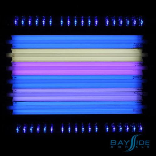 ATI ATI T5 Bulb 24W True Actinic