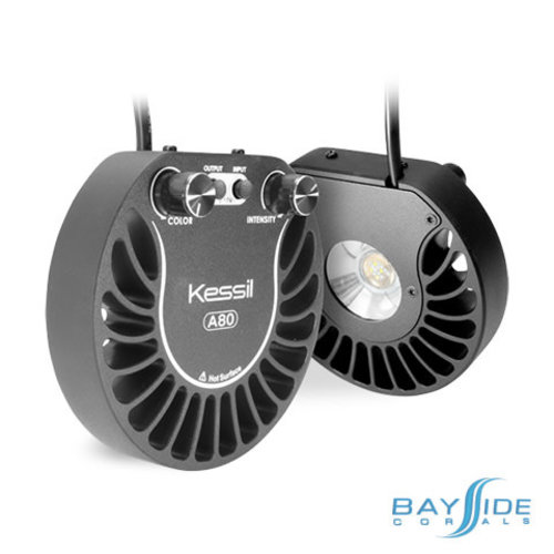 Kessil A80 Tuna Sun LED