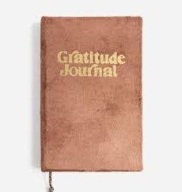 Printfresh Gratitude Journal Blush Pink Velvet