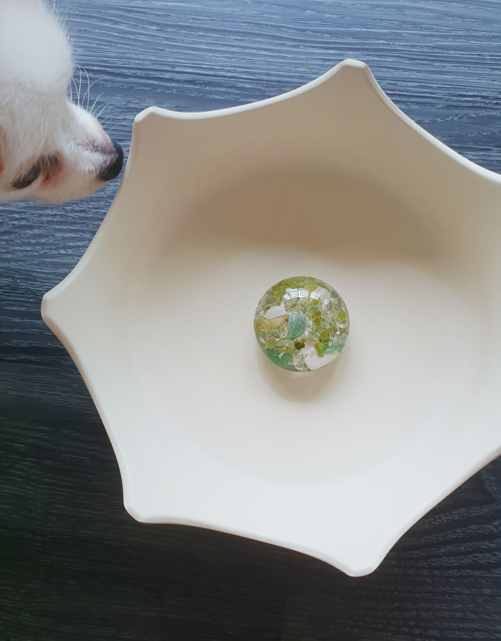 Gem Water Gem-Water CrownJuwel Pet Bowl by VitaJuwel in Natural White