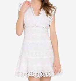 Endless Rose Plunging Neck Linen Lace Mini Dress