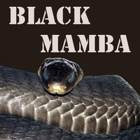Black Mamba 30ml 00mg