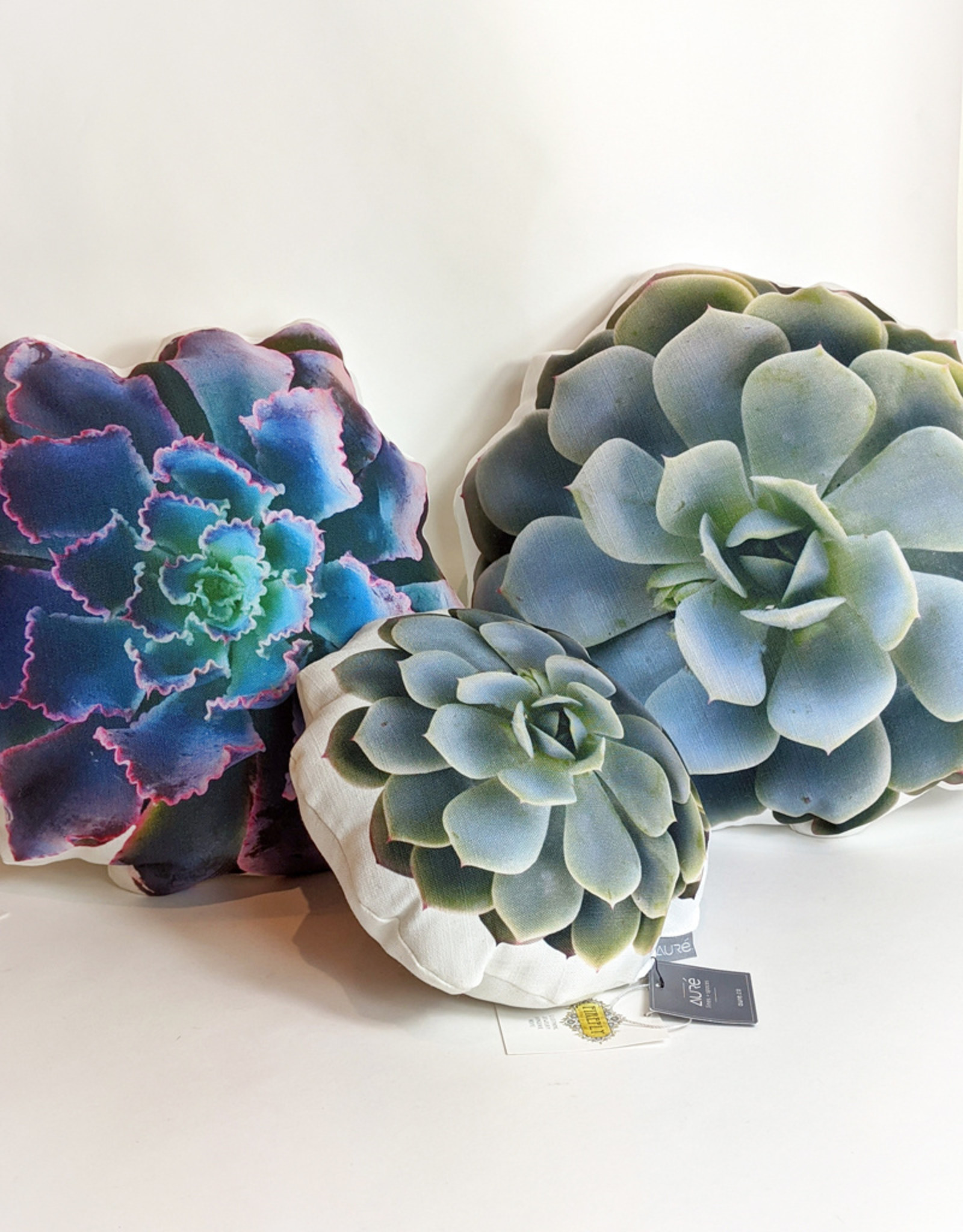 "Aure 10"" Succulent Pillow"