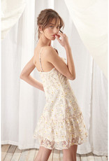 Daisy Embroidered Floral Mesh Dress