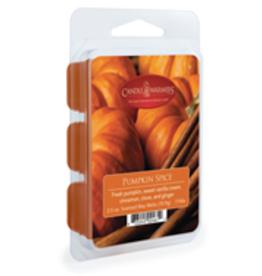 2.5oz Wax Melt Pumpkin Spice
