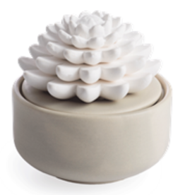 Porcelain Aroma Diffusers Succulent w/15mL Peppermint