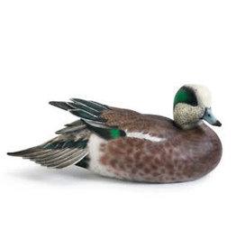 Wigeon Duck Decoy