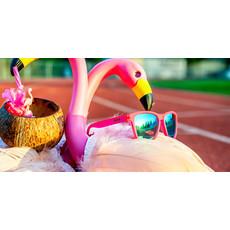 GOODR Flamingos On A Booze Cruise