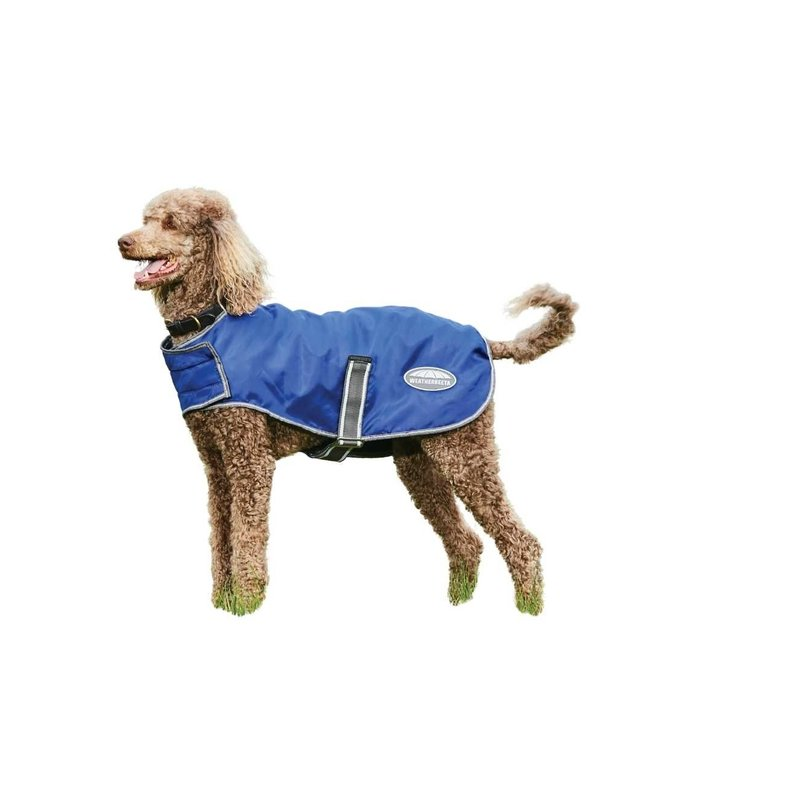 Weatherbeeta Weatherbeeta Dog Comfitec Windbreaker