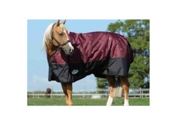 Horse/Dog Clothing