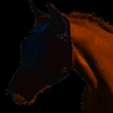 Cashel Fly Mask Long Nose w/Ears