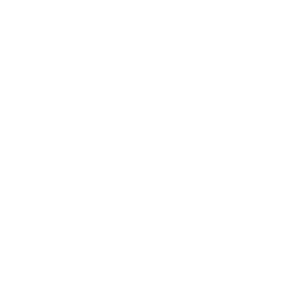 Prism E-juice | Salt Nic