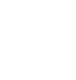 Naked STLTH Pod | Naked100