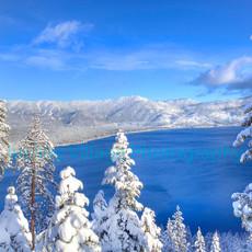 Winter Bliss